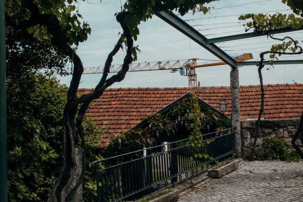 winnica porto